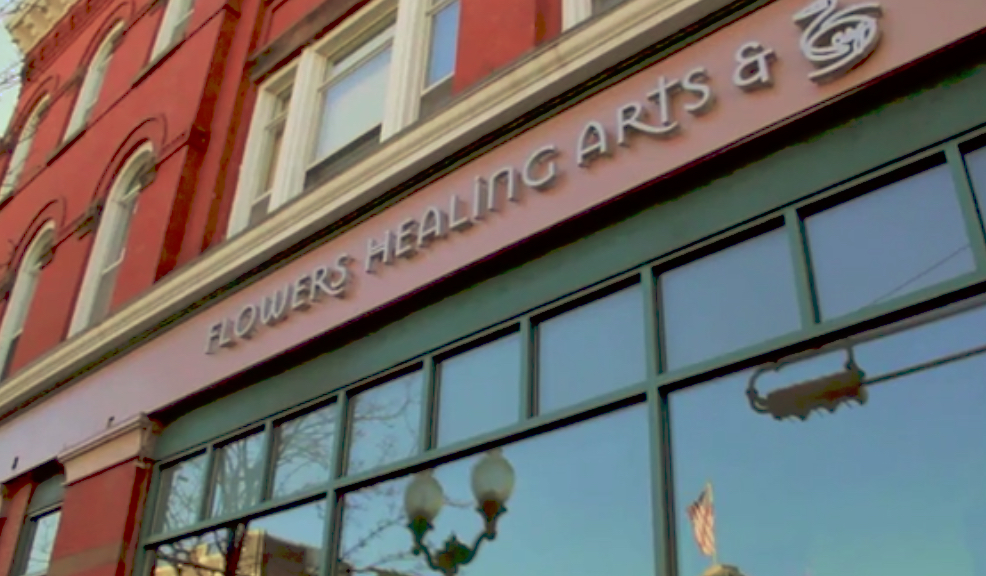 holistic health business