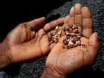 pic of man holding seeds