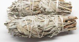 pic of smudging sage