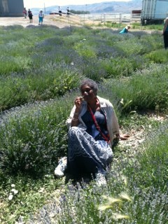 Photo of Niamo in lavender field, grounding